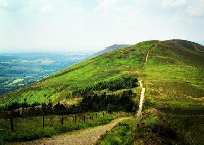Local Hikes & Walks