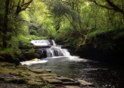 Waterfall at Clare Glens