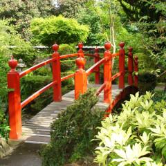 Irish National Stud and Gardens